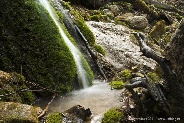Мох на камне и водопад