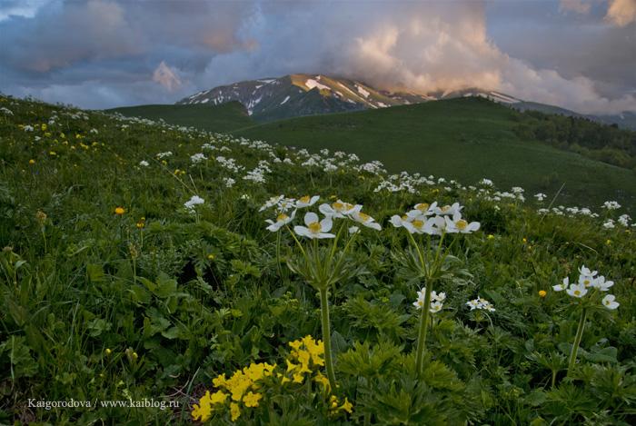 Склоны горы Матук