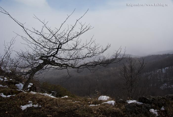 Меняется сезон в Лагонаки