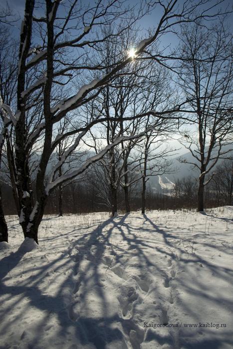 Горячий Ключ зимой