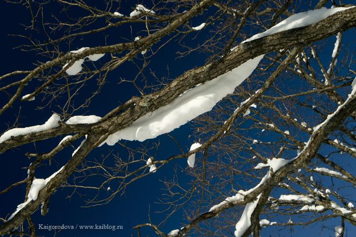 Зима на хребте Котх