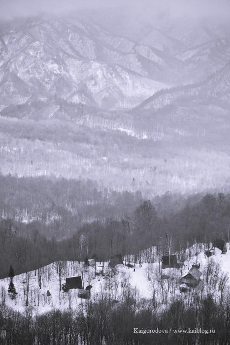 Вид с обзорной площадки Нежная