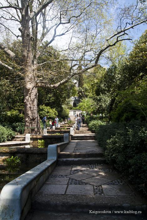 Ботанический сад в Ялте