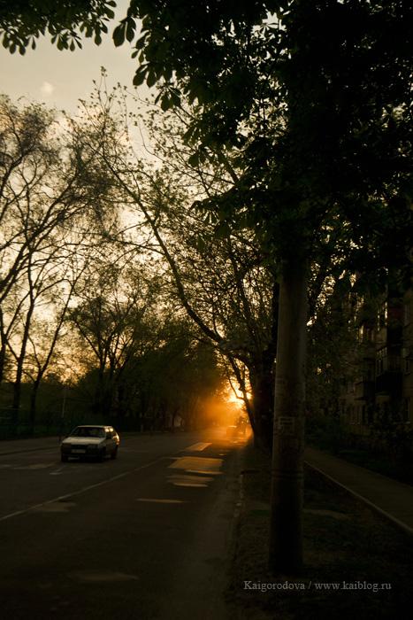 Вечера Краснодара
