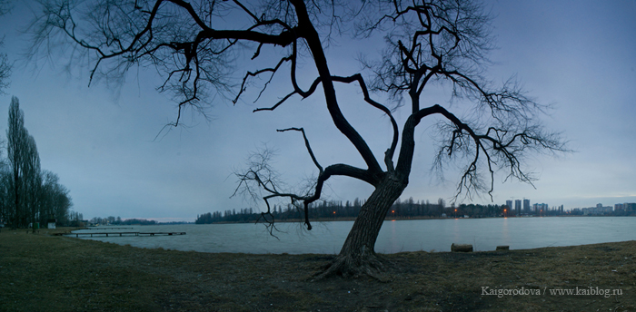 Одиночество и мир