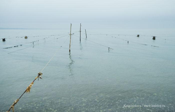 Рыбаки абхазия, море