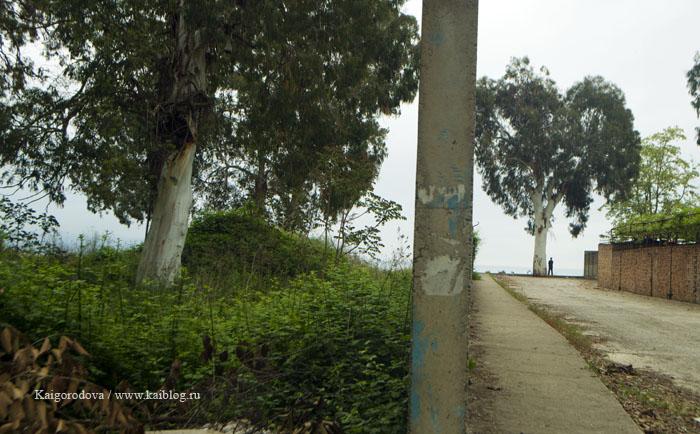 Сухум берег моря