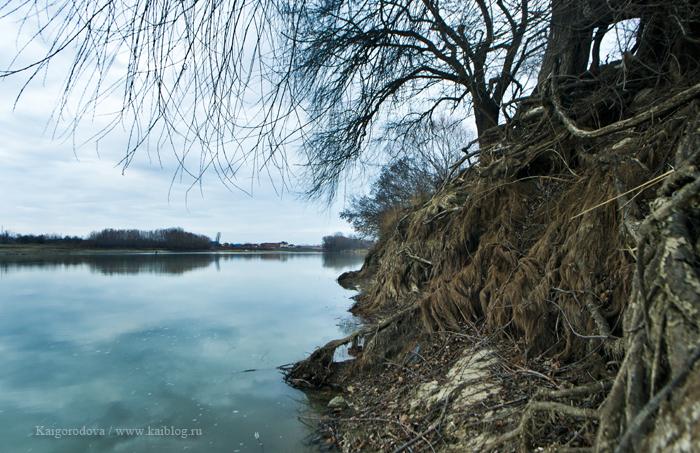 Зима и обмелевшая Кубань