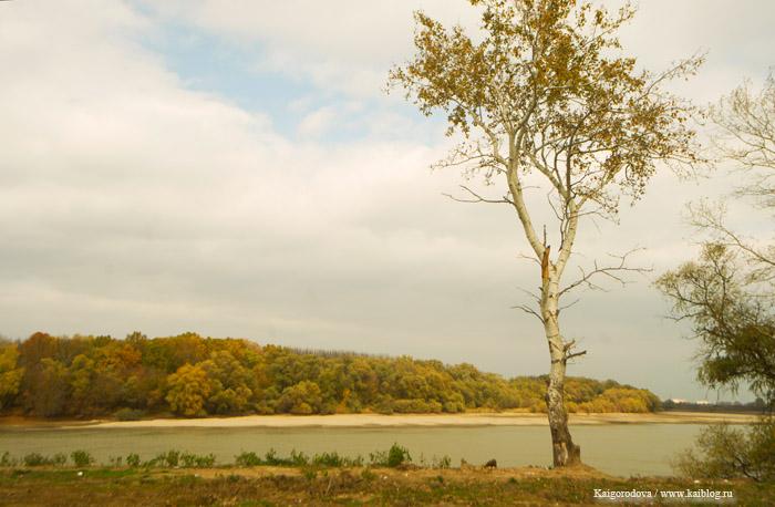 река Кубань. пос. Старобжегокай