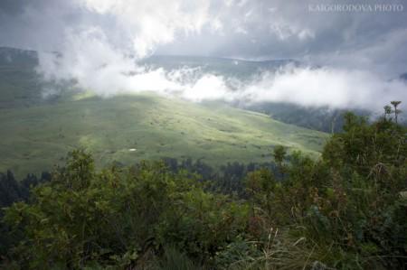 Конец августа на плато Лагонаки.